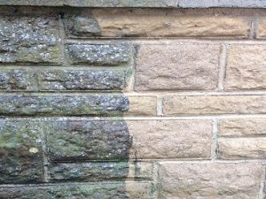 Garden wall cleaning